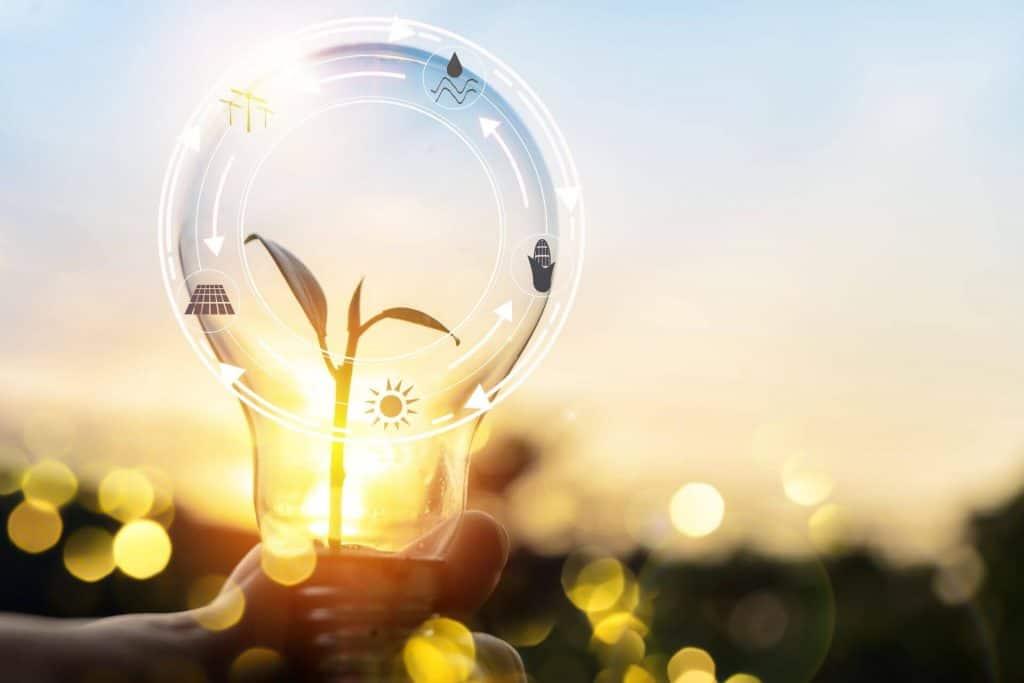 Energy efficiency certificate